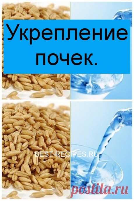 Укрепление почек. - Best-recipes.ru