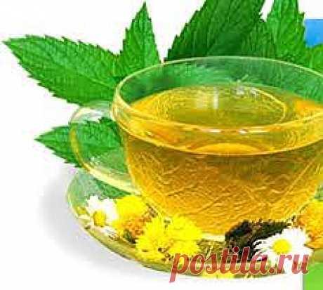 5 полезных и вкусных добавок из трав к чаю
