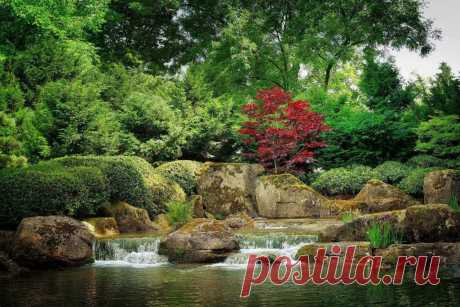 Восточные сады: отличия Китайского и Японского стиля ~ Planetalsad