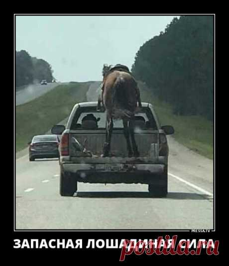 https://car-day.ru/blog/43858775321/Zabavnyie-zhiznennyie-demotivatoryi   Забавные жизненные демотиваторы обо всем на свете для хорошего настроения. Приятного просмотра!