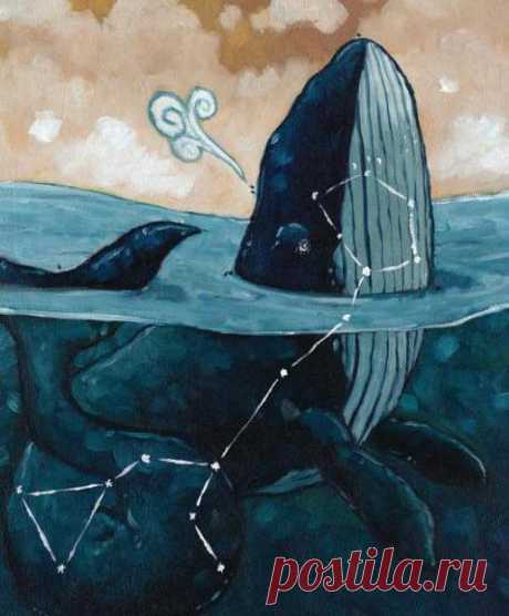 Созвездие Кита. 14 знак зодиака. Астрология :: SYL.ru