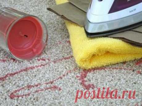 9 cunning councils which will help you to clean any spots from a favourite carpet. — Kopilochka of useful tips
