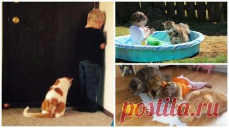 ВОТ ПОЧЕМУ КАЖДОМУ РЕБЁНКУ НУЖЕН КОТ      Детство - это когда твой кот старше тебя. Каждый из нас нуждается в друге. Эти малыши нашли себе друзей, и я уверена, эта дружба продлиться ещё многие годы!                                       …