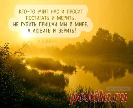 Цитаты Есенина о любви и жизни