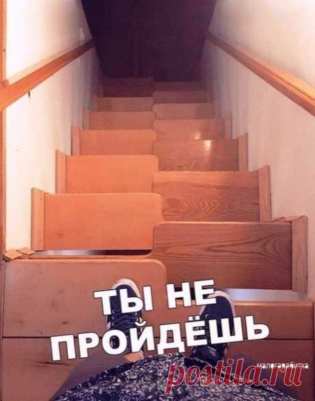 Очень удобная лестница. Гусиный шаг.