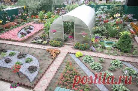 Многие в нашей стране имеют дачные участок, сад или огород. Выращивают прекрасные урожаи овощей, фруктов, ягод. Для них мои полезные советы как вырастить урожай