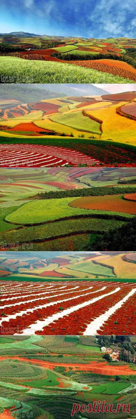 Китай, Юньнань: Dongchuan Red Soil - красные земли Дончуаня или Лоскутное одеяло на холмах / Мировые Достопримечательности / Мировые достопримечательности. Фото достопримечательностей, идеи для путешествий. Туристический журнал.