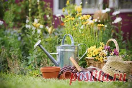 Small secrets to the gardener - the gardener