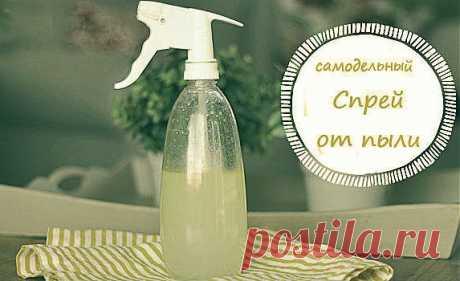 (+1) тема - Самодельный цитрусовый спрей от пыли | МОЯ КВАРТИРА