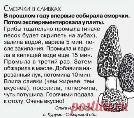 Кухонька Михалыча №5 2020