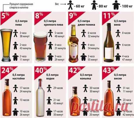 Сколько алкоголь держится в организме: человека, таблица, пиво, ликер, какой