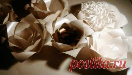 Бумажные цветы. Paper Line - Декор Студия.