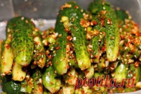 Ои Собаджи (кимчи из огурцов, огурцы по корейски) : Закуски и бутерброды