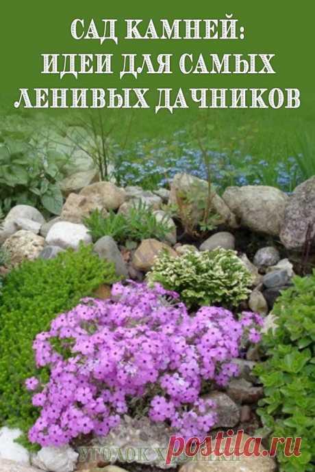Украшать свой участок можно замысловатыми клумбами, требующими постоянного ухода. А можно соорудить сад камней, который потребует минимум сил для поддержания его красоты.