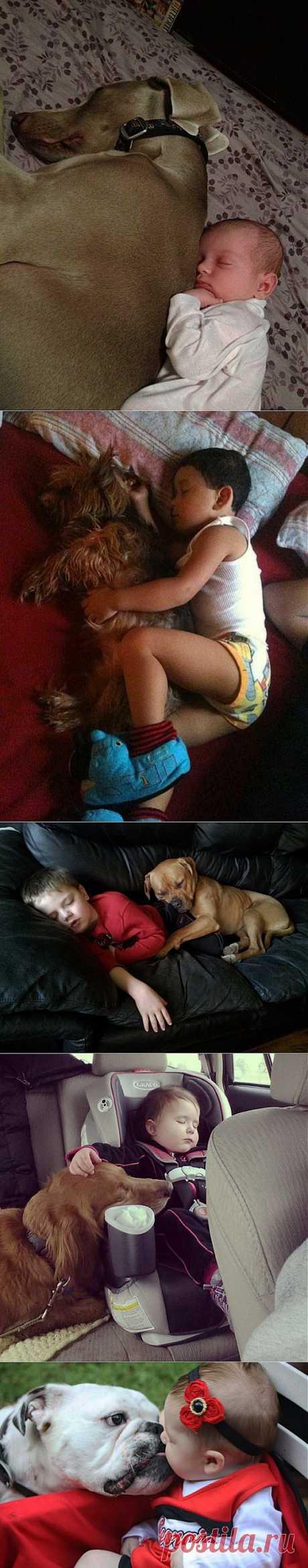 Очень милые фотографии детей с собаками | ЛЮБИМЫЕ ФОТО