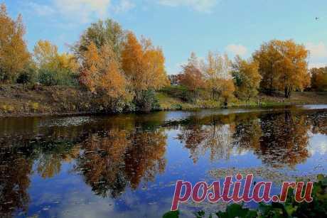 Осень в Волго-Ахтубинской пойме