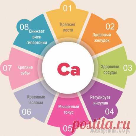 Недостаток кальция в организме – симптомы, лечение, профилактика