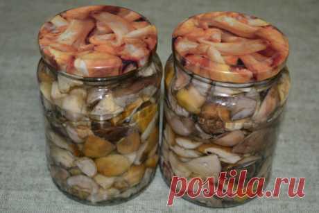 Astounding mushrooms of house preparation!   CHEAP RECIPES   Yandex Zen