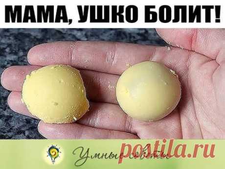 «Мама, ушко болит!» Ситуация, знакомая многим родителям. Рецепт же крайне прост, дешев и эффективен. Сварите вкрутую яйцо, затем тщательно отделите белок от желтка и положите желток в чистую простую (ни в коем случае не в искусственную и не в марлю) ткань и выжмите из него на блюдце несколько капелек. Эти капельки и закапываете в больное ушко. Боль проходит мгновенно и уже не возвращается. Главное условие — ткань, блюдце и пипетка должны быть стерильно чистыми, чтобы не занести ребенку в ухо и