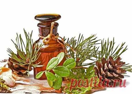 Красота за копейки, или как использовать пихтовое эфирное масло | ПолонСил.ру - социальная сеть здоровья