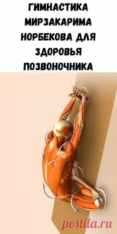 Гимнастика Мирзакарима Норбекова для здоровья позвоночника - Советы для женщин