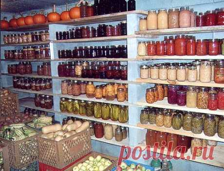 Grandma's Root Cellar - Remember that? - The Homesteading Hub
