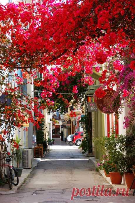 15 самых волшебных улиц в тени цветов и деревьев