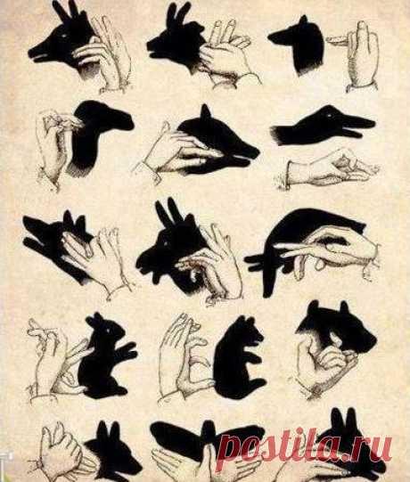 Как сделать тени своими руками.