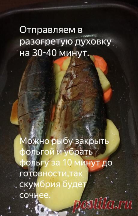 Скумбрия с овощами в духовке | Igor Nikulshin | Яндекс Дзен
