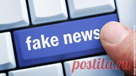 Американским соцсетям придется соблюдать российские законы Весь мир беспокоит проблема распространения фейков и незаконного контента. Ни одно государство просто не в состоянии бороться с ним самостоятельно – без привлечения самих площадок, вроде Facebook и YouTube.