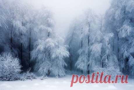 Фантастические зимние пейзажи / Всё самое лучшее из интернета