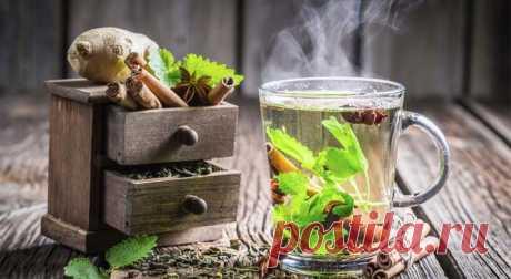 Что добавить в чай, чтобы получить максимум пользы - Health