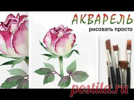 Как нарисовать цветок РОЗА!  АКВАРЕЛЬ! Уроки для начинающих. Живопись акварелью на бумаге просто
