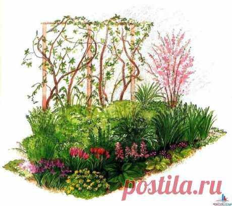 Parterres que florecen de la primavera incipiente a otoño avanzado   6 sotok