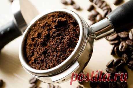 Учимся варить вкусный кофе как профи: 6 лайфхаков для настоящих гурманов