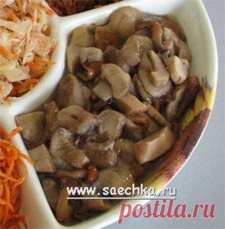 Грибы с уксусом | рецепты на Saechka.Ru