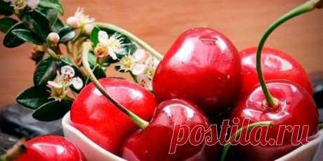 Лечебные свойства вишни — Бабушкины секреты