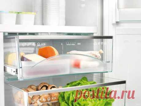 Какие продукты нужно хранить в холодильнике, а какие — нет?