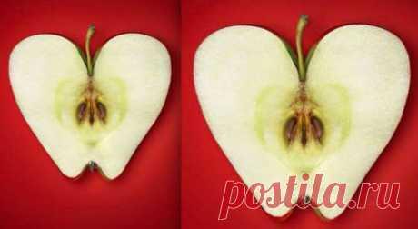 Сердце-бумеранг: 32-летнее исследование доказало связь рациона иболезней сердца . Милая Я