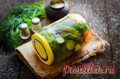 Хрустящие и вкусные маринованные огурцы: проверенный рецепт с описанием и фотографиями