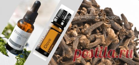 Полезные свойства эфирного масла гвоздики | Здоровье и красота от природы