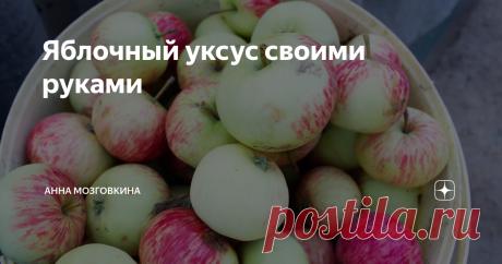 Яблочный уксус своими руками Яблок полным полно! Урожайный год нынче. ⠀⠀ Буду делать иммуно-стимулирующее средство, содержащие много полезных витаминов и микроэлементов – Яблочный Уксус! ⠀⠀⠀⠀