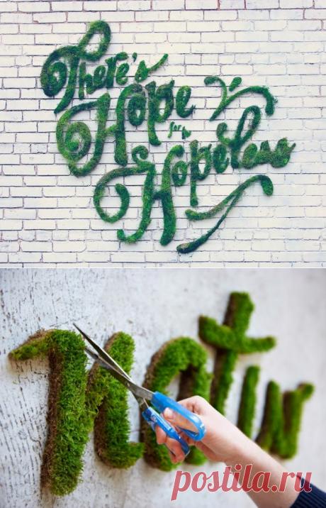 Когда вы нарисуете на стене этой смесью все решат, что это вандализм. Но несколько дней спустя не смогут остаться равнодушны!