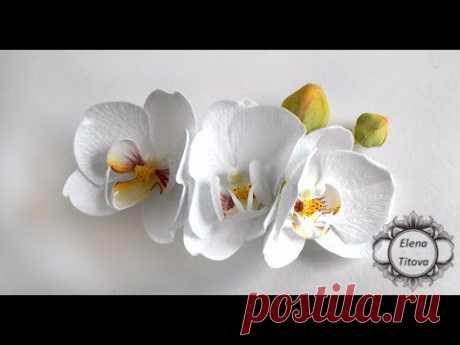 Мастер-класс Орхидея.Цветы из фоамирана