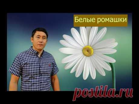 "Азамат Исенгазин - ""Белые ромашки"" НОВИНКА 2021 !!!"