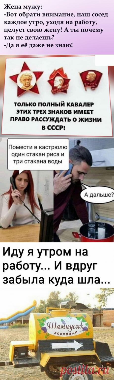 Весёлые картинки | Юмор | Яндекс Дзен