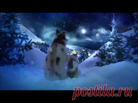 Chris Norman Christmas Song