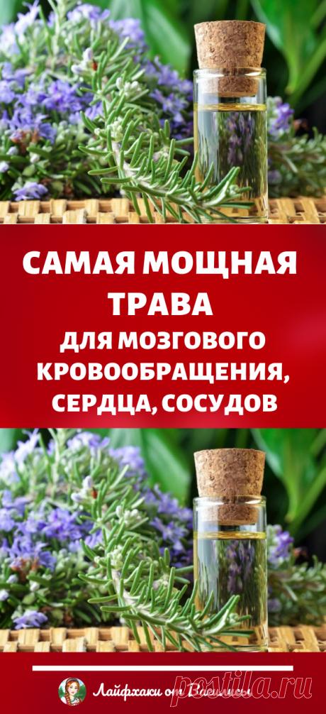 Самая мощная трава для мозгового кровообращения, сердца, сосудов, надпочечников, суставов, кожи, волос. Красота и здоровье в домашних условиях