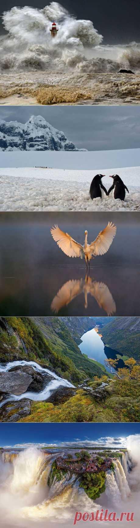 25снимков природы, которые выдолжны увидеть вэтом году