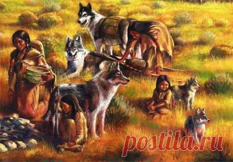 Стало известно, почему собаки сопровождают хозяина в туалет: стадный рефлекс, охранные инстинкты